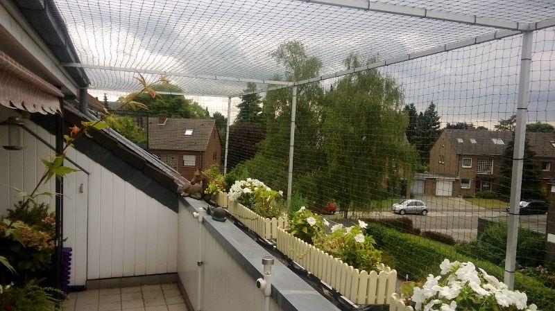 katzennetz und balkonkasten blumenkasten mit katzennetz With katzennetz balkon mit siena garden blumenkasten