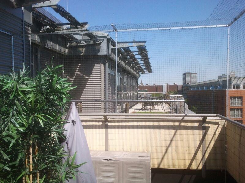 Top Dachterrasse mit Katzennetz BL64