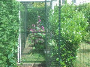 Garten katzensicher vernetzt