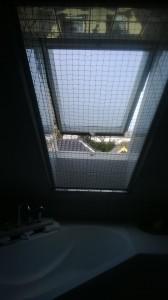 Dachfenster Rollo mit Katzennetz. sicheres Lüften kein Problem